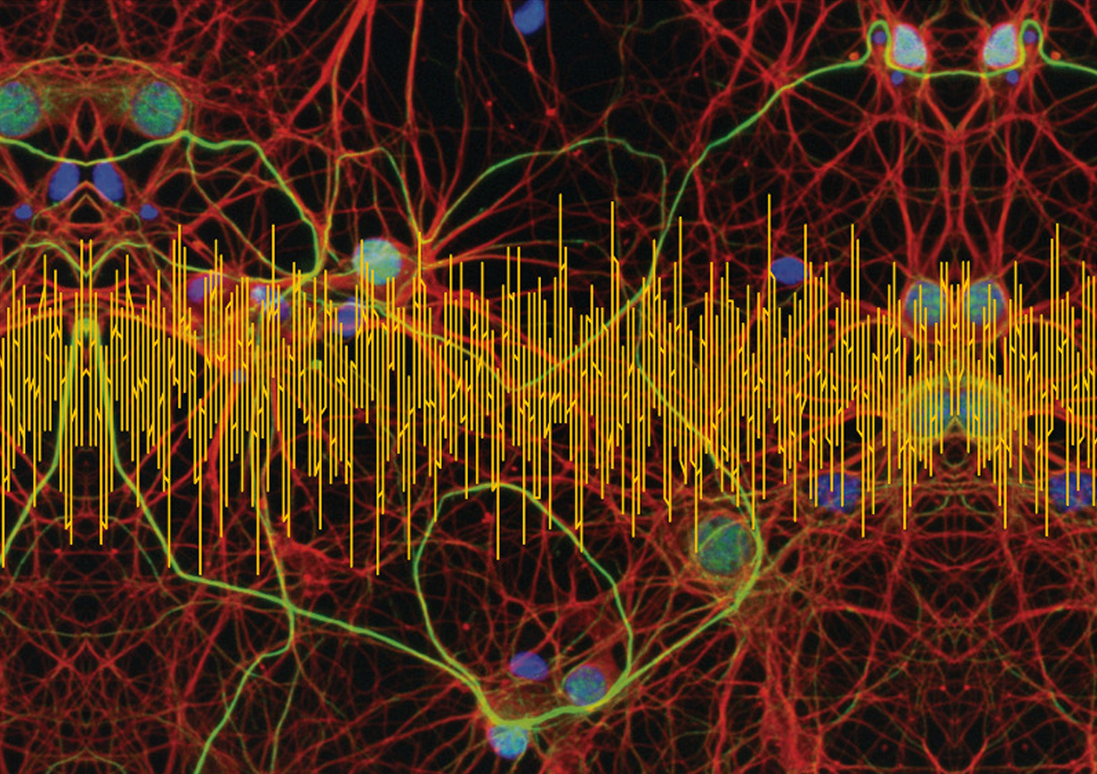 Challenges of Electroencephalography in the 21 Century